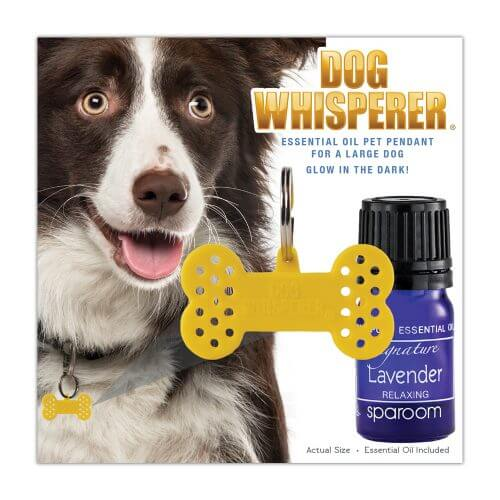 Dog Whisperer Large Collar Pet Diffuser Pendant in its package with an oil included