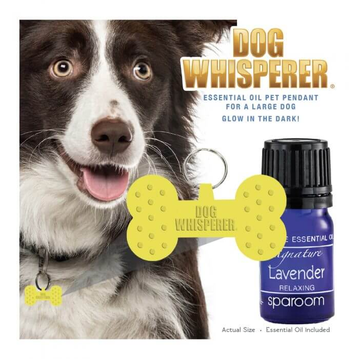 Dog Whisperer Large Pet Pendant