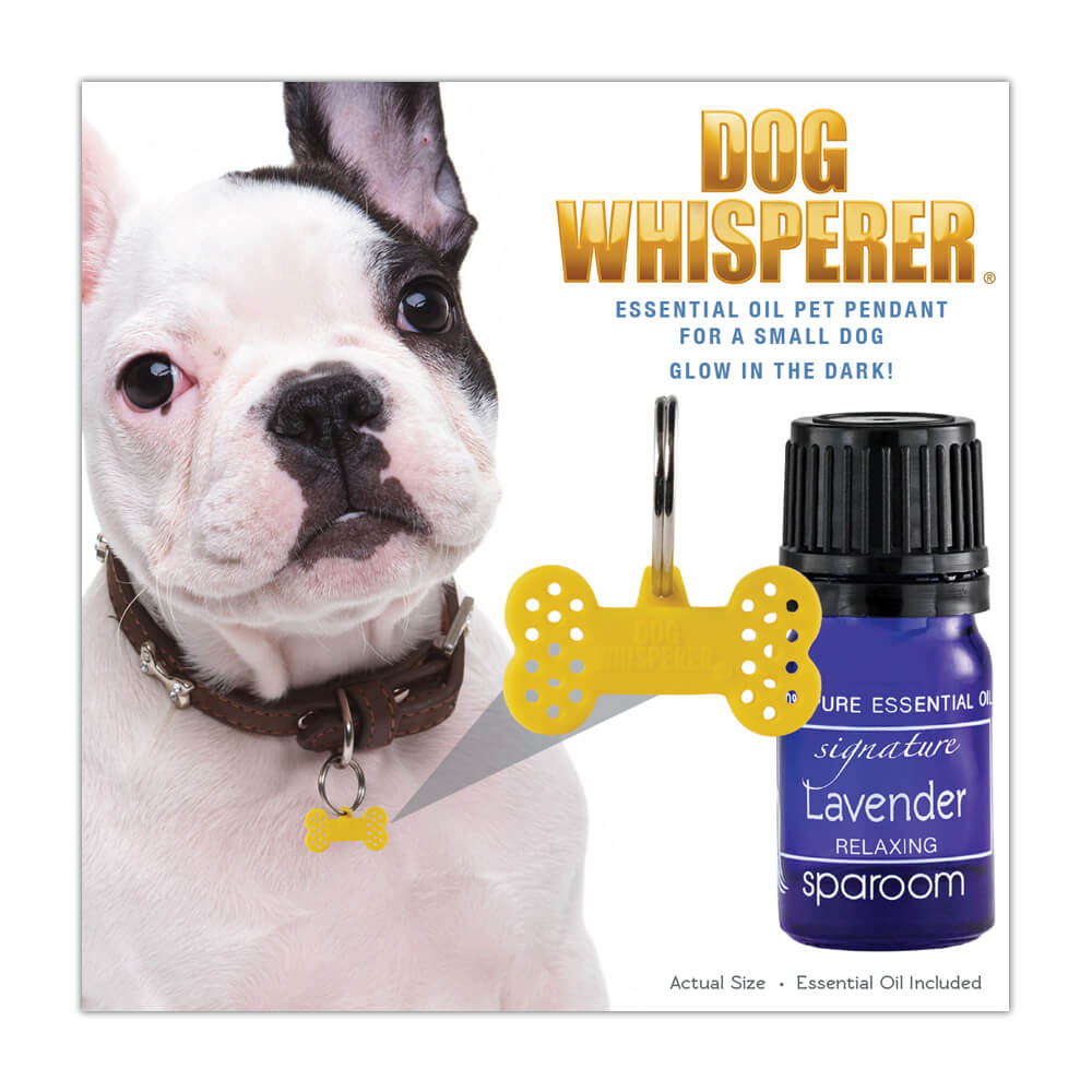 Dog Whisperer Small Collar Pet Diffuser Pendant in its package with an oil included