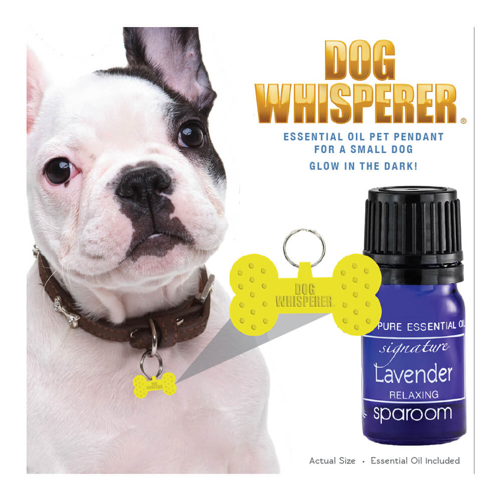 Dog Whisperer Small Pet Pendant
