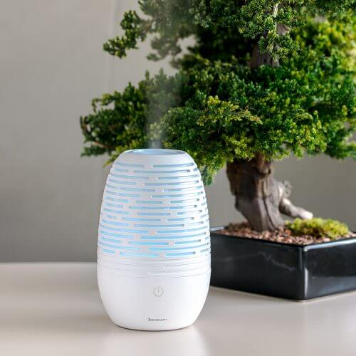 EverMist Essential Oil Diffuser on Table with Small Tree