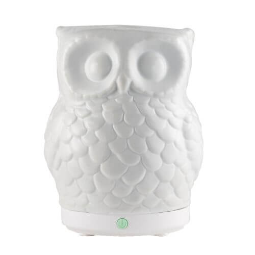 Mister Hoot Essential Oil Diffuserr On