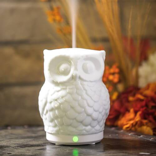Mister Hoot Essential Oil Diffuserr in Fall Scene