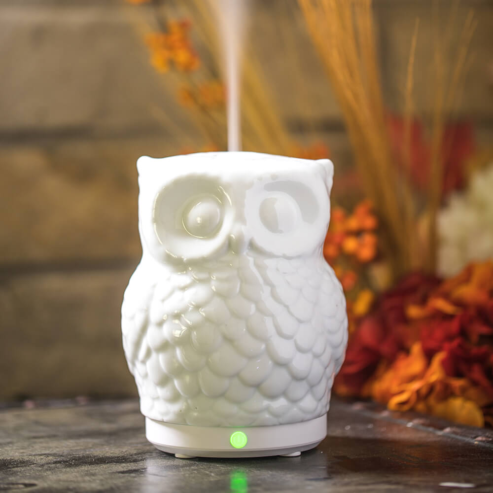 Mister Hoot Essential Oil Diffuser