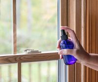 Perimeter Spray window to keep bugs away