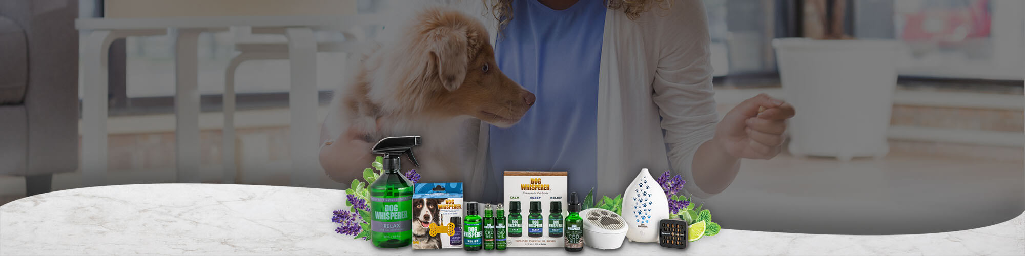 Essential Oil For Dogs Top Banner