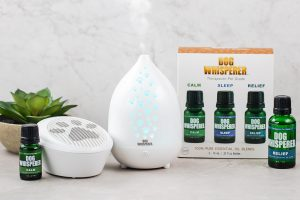 Dog Whisperer Diffusers and Essential Oils