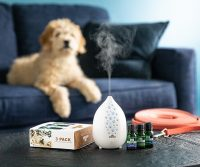 Puppy with PureBreathe Diffuser and Dog Whisperer Essential Oil 3-pack